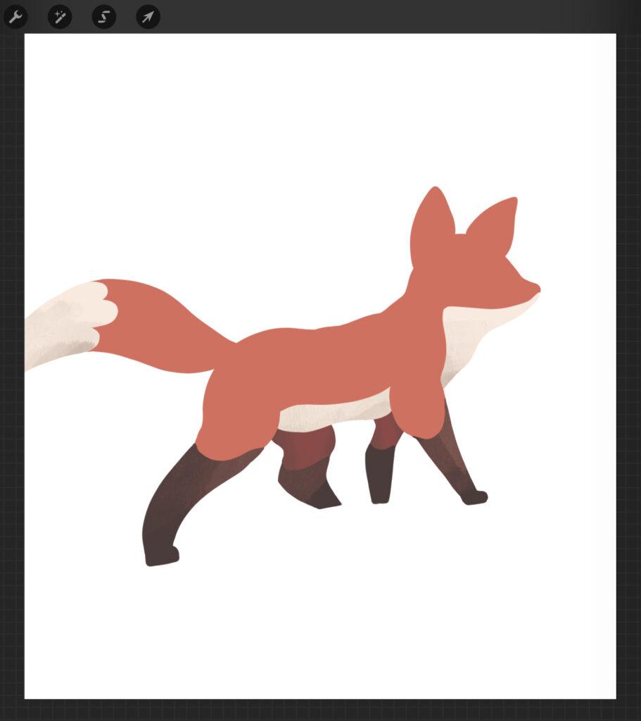 Dibujo de un zorro por Juan Antonio Cortés, primer paso